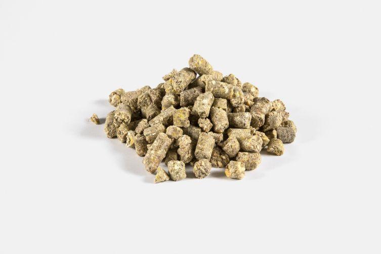 Bio-Maiskolbenschrotwürfel