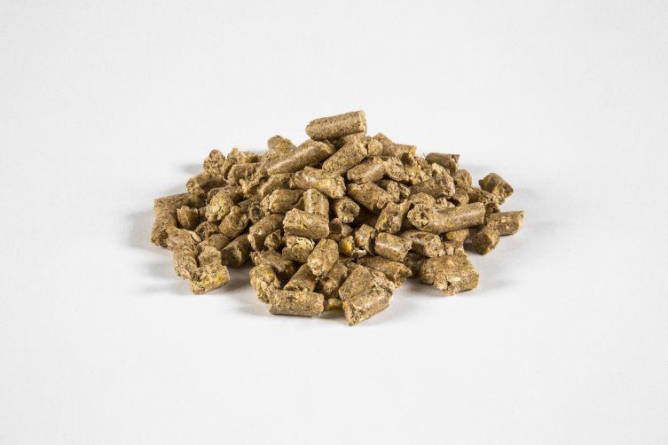 Maiskolbenschrotwürfel mit Zuckerrübenschnitzel (20%)